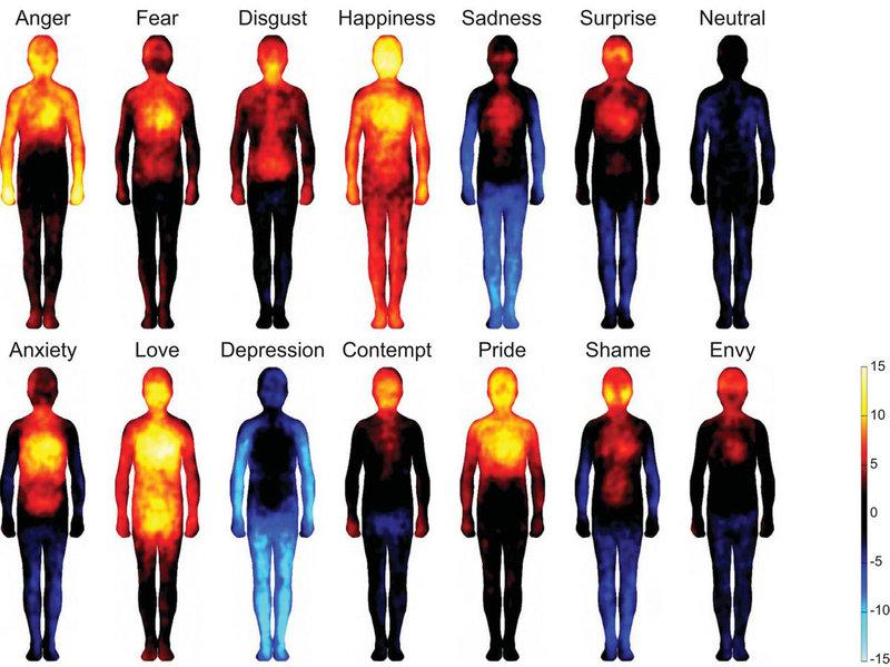 Cum se manifesta emotiile in corpul nostru?